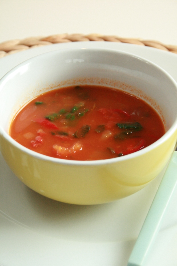 Spicy grønnsakssuppe Foto: Linda Pano