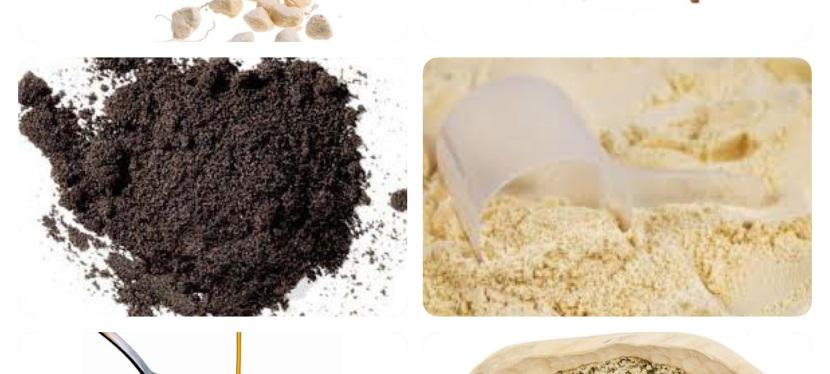Vinn en økologisk smoothiepakke
